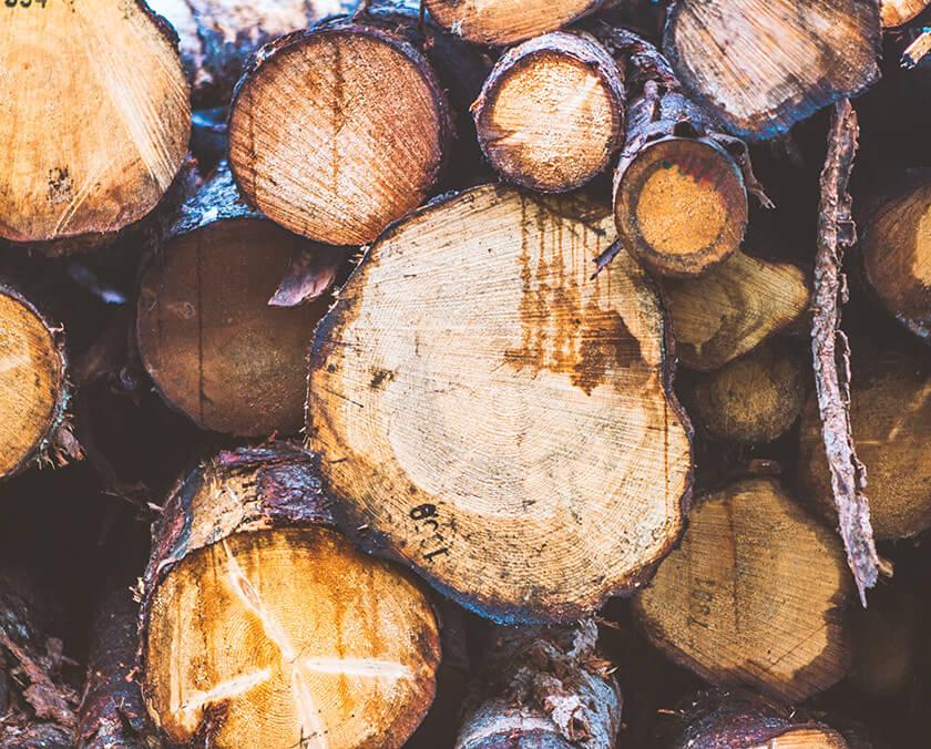 Valorisation – (à traduire) Coopérative forestière Ferland-Boilleau