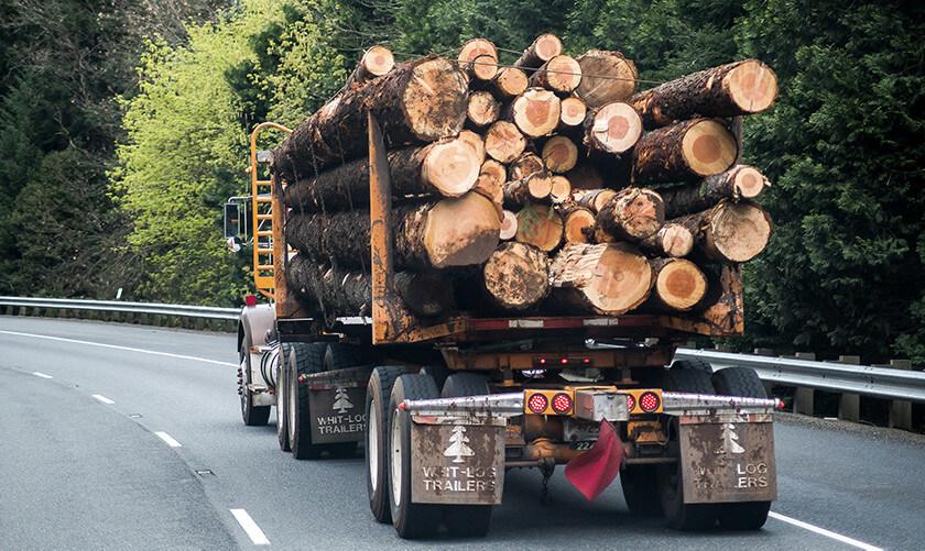 Opération forestière – (à traduire) Coopérative forestière Ferland-Boilleau