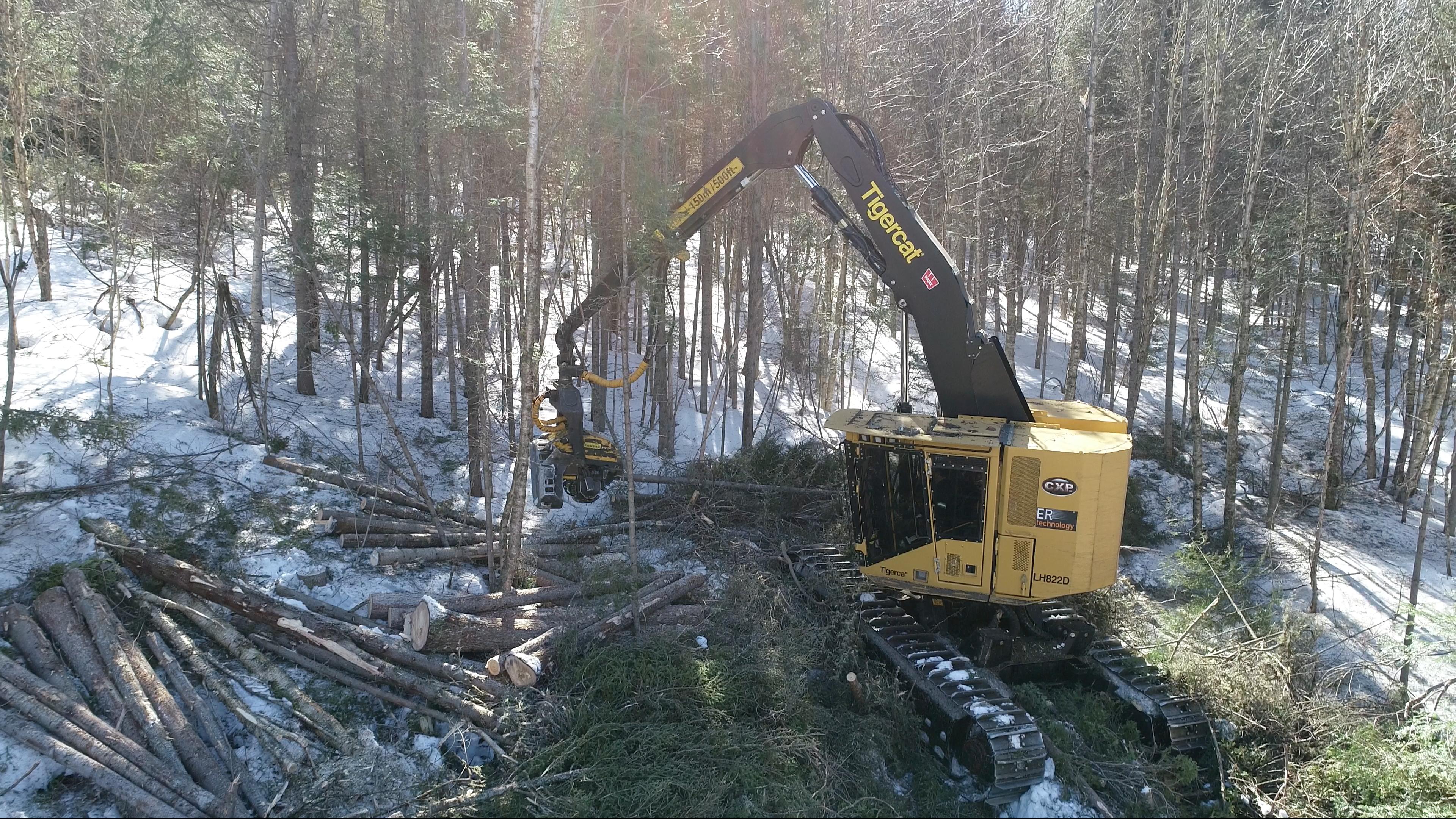 Opérateur d'abatteuse multifonctionnelle Coopérative forestière Ferland-Boilleau