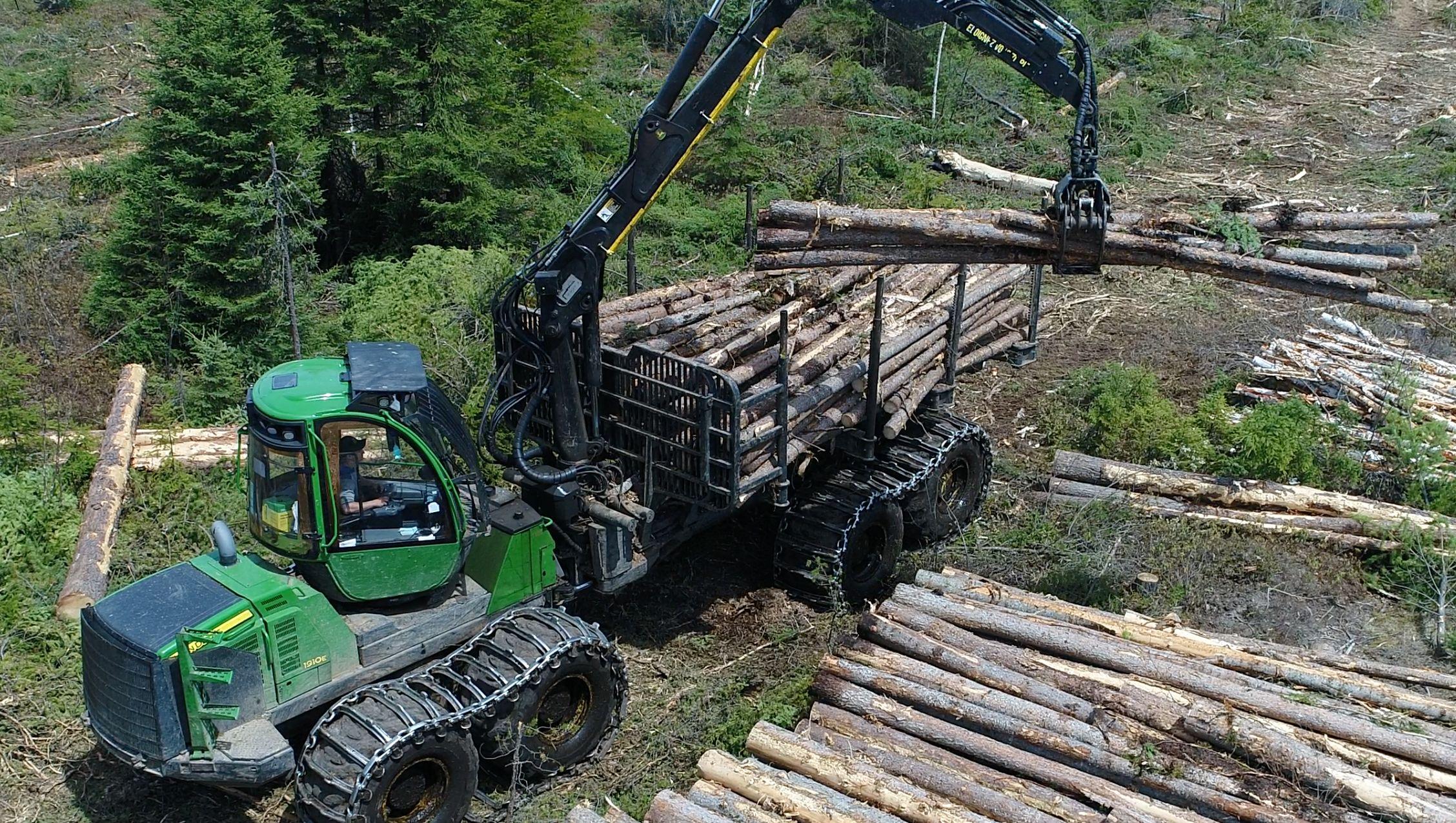 Opérateur d'abatteuse multifonctionnelle ou transporteur Coopérative forestière Ferland-Boilleau
