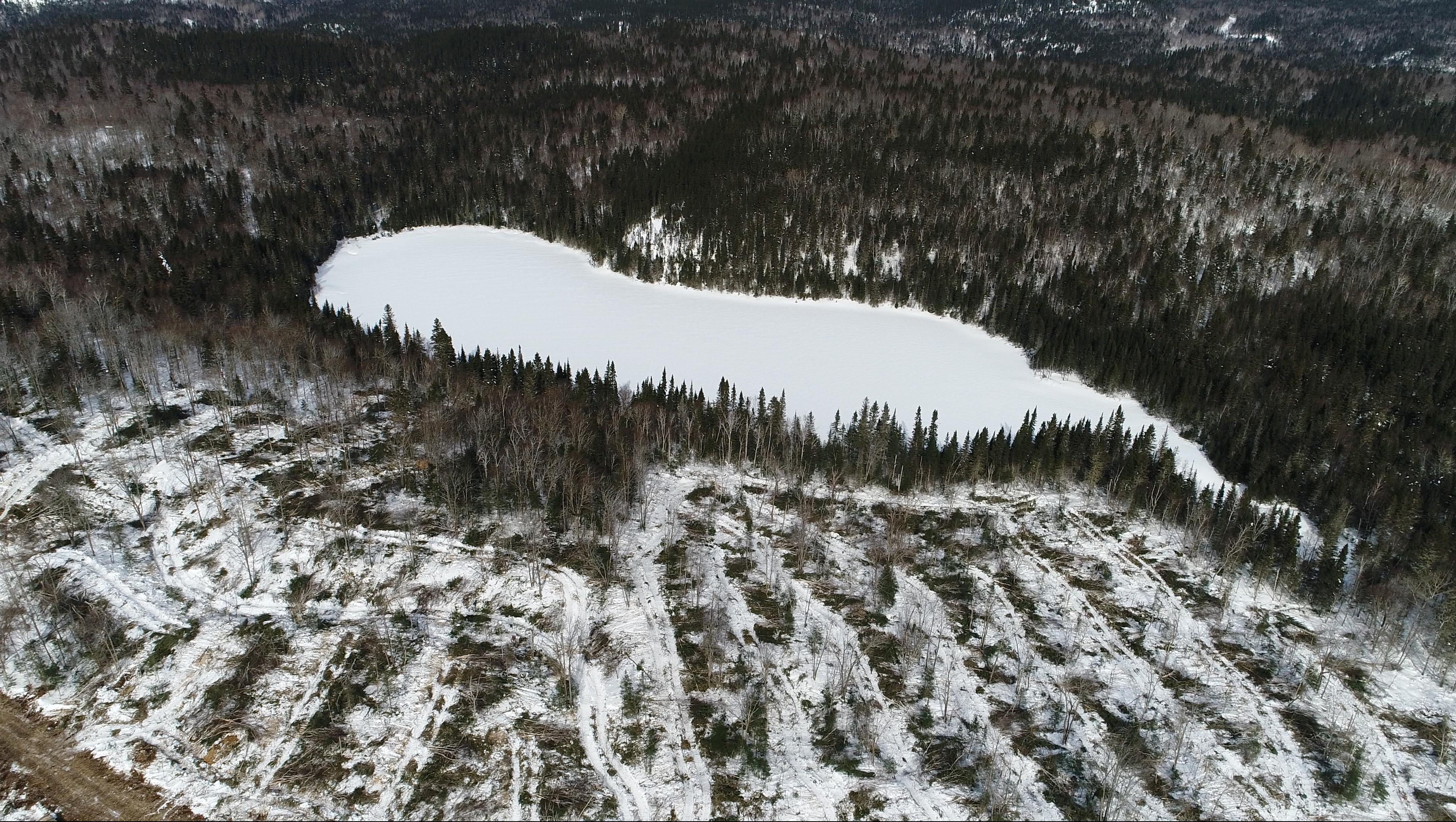 Services forestiers Coopérative forestière Ferland-Boilleau